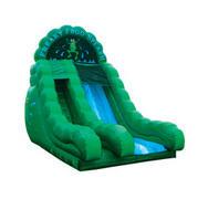 18' Dry Slide - Frog rental Austin, TX