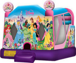 Bounce House Combo Disney Princesses rental San Antonio, TX