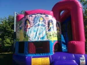 Pink Bounce House Combo with Disney Princess Panel rental San Antonio, TX