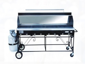 Propane Grill with Hood rental Houston, TX