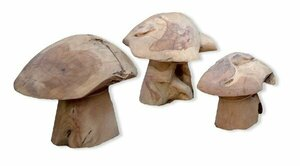 Wooden Mushrooms rental Houston, TX