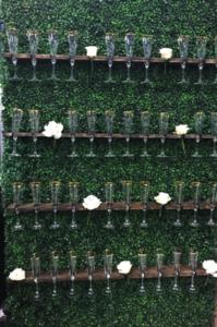 Champagne Wall rental Houston, TX