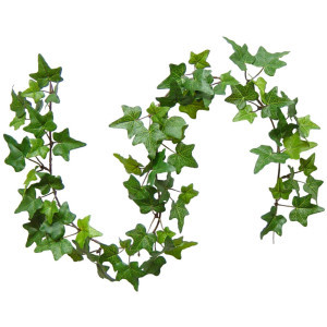 Decorative Ivy rental Dallas-Ft. Worth, TX