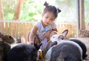 Traveling Petting Zoo rental Los Angeles, CA