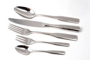 Stainless Flatware rental New Orleans, LA